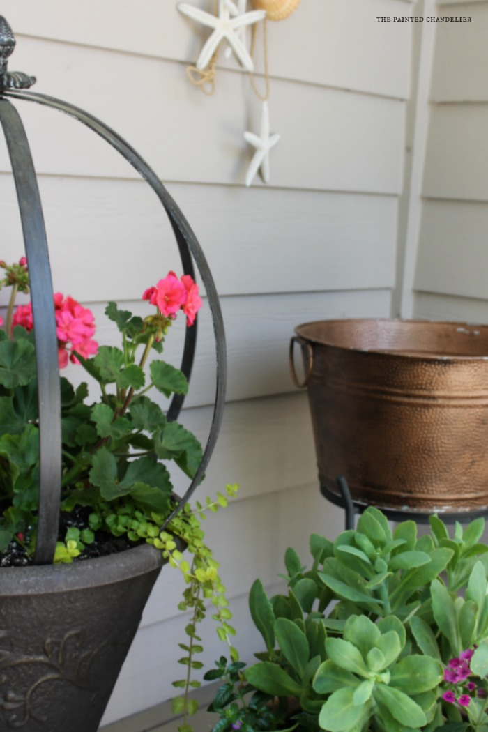 summer-porch-succulents-and-geraniums-caribou-door-color